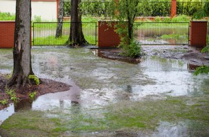 Drainage repair and yard flooding
